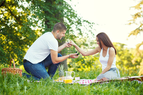 Picnic in park proposal