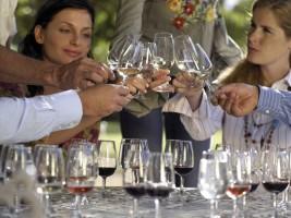 Wine Tasting Proposal